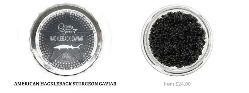 American Hackleback Sturgeon Caviar in Stock