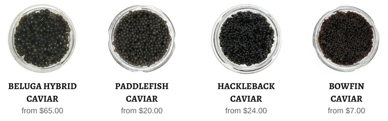 sustainable caviar in stock